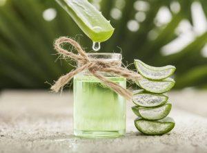 L'aloé Vera est très présente dans les produits cosmétiques bio