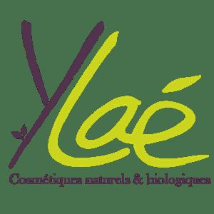 YLAE Box évidence