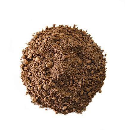 cacao en poudre alveus bio