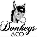Donkey & Co