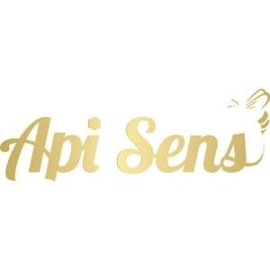 Logo Api Sens