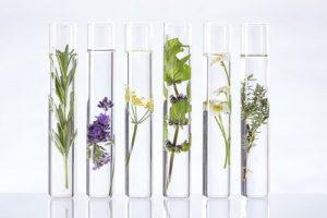 cho nature huile de beaute
