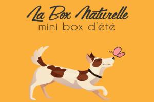 Mini box dété pour chien La Box Naturelle